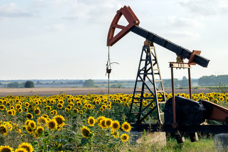 Tyulenovo oil field