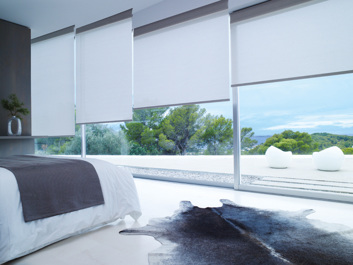 Arexim blinds