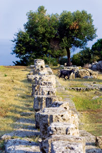 At the end of the 4th Century, worshippers abandoned the Sanctuary of the Great Gods