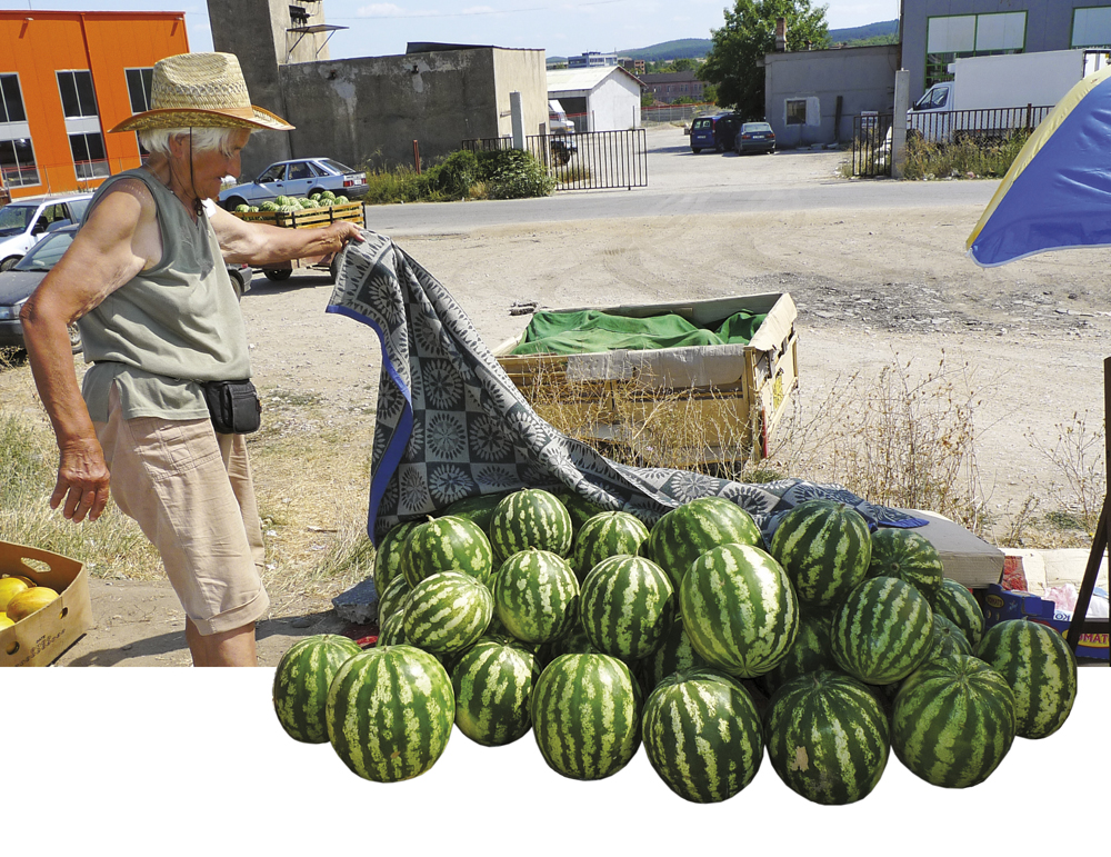 watermelon bulgaria.jpg