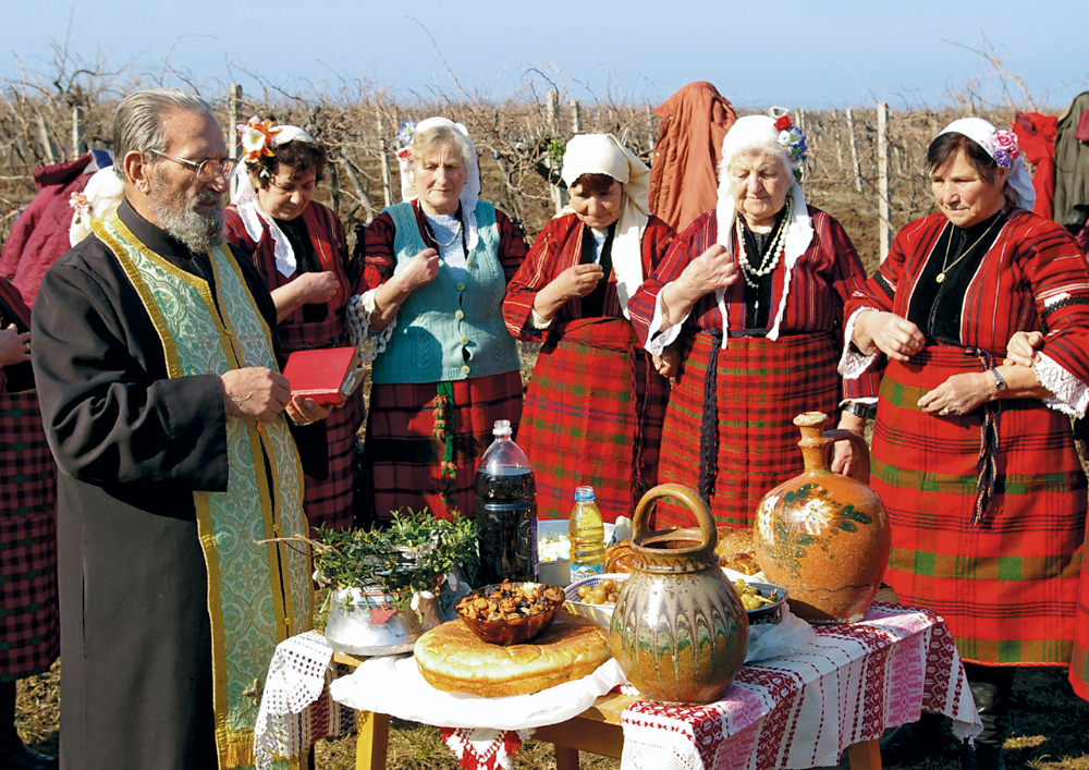 A priest blesses vineyards. St Trifon Day combines the pagan and the Christian