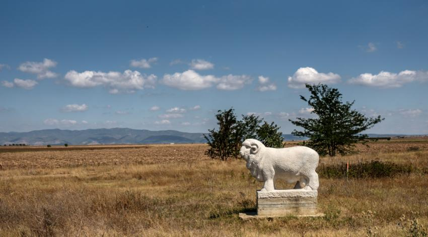 sheep monument